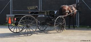 Amish Pickup.