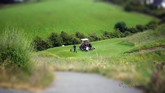 Tipperary Town Pitch and Putt (ggcphoto) Tags: tipperary town pitchandputt green grass lawnmower people men work cutting tractor footpath day hills tipperaryhills tiltshift 50mm