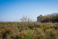 A orillas del mar (SantiMB.Photos) Tags: 2blog 2tumblr 2ig carrabiners ruinas ruins geo:lat=4129652025 geo:lon=212305012 geotagged elaeroportdelprat cataluna españa esp