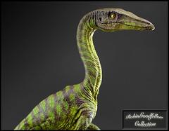 Coelophysis ( 1:5 ) - nr. 14/30 (RobinGoodfellow_(m)) Tags: coelophysis sensen 15 1430 cina china sculptor dinosaur resin statue