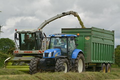 Claas Jaguar 890 SPFH filling a Thorpe Trailer drawn by a New Holland T6080 Tractor (Shane Casey CK25) Tags: claas jaguar 890 spfh filling thorpe trailer drawn new holland t6080 tractor nh cnh blue newholland self propelled forage harvester silage silage2017 silage17 grass grass17 grass2017 2017 17 winterfodder winter fodder cows cattle feed mitchelstown county cork ireland irish farm farmer farming agri agriculture contractor work working land field horse power horsepower hp pull pulling machinery machine chopper crops nikon d7100 ciągnik tracteur traktori trekker traktor trator