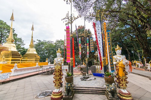 doi tung - thailande 14