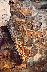 _DSC1480 (cklingenberg) Tags: south dakota windcave blackhills custer state park