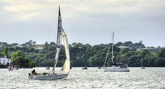 Sailing on the River Tamar (Baz Richardson (trying to catch up again!)) Tags: rivertamar cornwall torpoint yachts sailing rivers