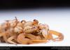 Striped Bark Scorpion  (Buthidae, Centruroides vittatus (Say)) (insectsunlocked) Tags: arachnida buthidae centruroides centruroidesvittatus scorpiones scorpion stripedbarkscorpion insectsunlocked santillanaale