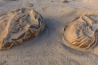 Cracked Eggs Formations in the Bisti Badlands