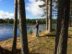Am Grenzfluss Torne älv (Ulrike Parnow) Tags: polarkreis torneälv grenzfluss schweden finnland