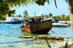 Lost Boat (Buenouve ) Tags: lost perdido boat bote barco puerto muelle port dock aground encalla sanandresislas sea mar rusty oxido palmtree palmera abandoned abandonado