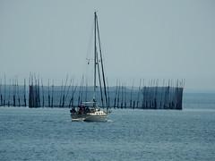 A sailboat in North Head Harbour on Grand Manan Island (Bay of Fundy), New Brunswick (Ullysses) Tags: sailboat northhead harbour grandmananisland bayoffundy newbrunswick canada summer été sea mer herringweir