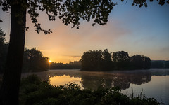 Sonn-Tag (Florian Grundstein) Tags: sunrise morning early sun lakeside lake trees mood reflection oberpfalz bayern nature natural misty