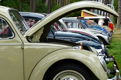 VW (evisdotter) Tags: vw volkswagen folkvagnar cars bilar badhusparken mariehamn