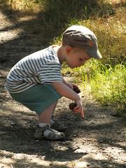 DSCF1520 (Benoit Vellieux) Tags: lyon parilly poulbot parc baby bébé kid gamin gör bube park casquette schirmmütze kappe cap marinière matrosenbluse blouse pommedepin pinecone tannenzapfen