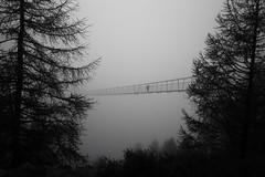 The Bridge (Toni_V) Tags: m2404924 rangefinder digitalrangefinder messsucher leica leicam mp typ240 type240 28mm elmaritm12828asph hiking wanderung randonnée escursione randa europaweg suspensionbridge hängebrücke hängebrückeranda charleskuonenhängebrücke alps alpen mattertal fog nebel mist bw monochrome schwarzweiss blackwhite bridge wallis oberwallis valais switzerland schweiz suisse svizzera svizra europe swissropecom ©toniv 2017 170812