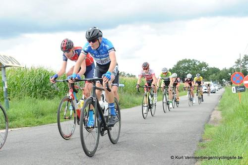 Omloop Vlaamse gewesten (374)