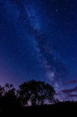 Milky Way From Kielder Forrest (Gellscom) Tags: highiso nightsky skys gellscom astronomy gerrymachen location
