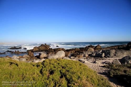 Sea and Rocks 5