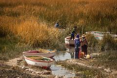 The edge of Lake Titicaca. (yeahwotever) Tags: cusco peru puno train