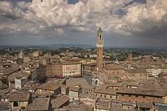 Sguardo su Siena (maresaDOs) Tags: siena toscana panorama italy tetti luglio summer2017 city landscape landschaft
