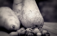 hazelnuts & pears (SpitMcGee) Tags: birnen pears haselnüsse stillleben stilllife blackwhite hmbt spitmcgee