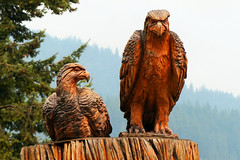 Angry Birds? (Garry9600) Tags: lumix fz200 kaslo britishcolumbia canada cans2s wood carving sculpture birds eagles outdoor art explore 10000views