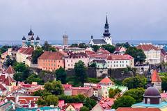 Tallinn (octohedron) Tags: tallinn tower estonia medieval stone trees green rain baltic