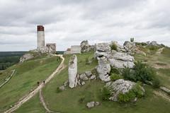 Zamek w Olsztynie (WMLR) Tags: hd pentaxd fa 2470mm f28ed sdm wr pentax k1