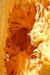 Inside the  pumpkin