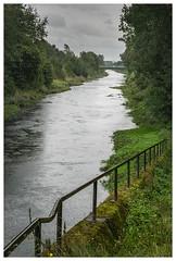 Die Emscher (Peter L.98) Tags: projekt365 emscher dortmund fluss bäume geländer regen sonya6000