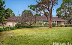 795 North Road, Cranbourne South VIC