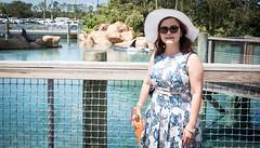 SeaWorld Orlando (kuntheaprum) Tags: seaworldorlando seaworld shamu killerwhale dolphin nikon d750 vacation