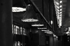 Lights (jessicagull) Tags: seattle downtownseattle blackandwhite monochromatic publicmarket lights citylights market seattlepublicmarket pikeplace pikeplacemarket