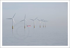 Offshore Wind Farm (Bram du Saar) Tags: prinsesamaliawindpark eneco offshorewindparkq7 q7windfarm egmondaanzee princessamaliawindfarm vestasv80 vestaswindturbines monopile abovesealevel tiphoogte tipheight seabed zeebodem zeewater seawater thenetherlands holland dutch nederland nederlands noordzeekust noordzee northsea sea merdunord nordsee offshorewindpower offshorewindfarm windopzee windenergieopzee energiaeòlicamarina offshorewindpark éolienneoffshore 洋上風力発電 priobalnavjetroelektrana 해상풍력발전 tenagaanginlepaspantai 離岸風力發電 morskavetrnaturbina parqueeólico vindmøllepark vindpark windfarm rüzgârçiftliği offshore maritiem maritime scheepvaart maritimetraffic utilityship windturbine vindkraftværk windkraftanlage вятърнатурбина aerogenerador ветрогенератор טורבינתרוח küləkturbini windkragaanleg windparkenopdenoordzee windmolensopdenoordzee windturbinesopdenoordzee windmolensinzee windturbinesopzee ijmond ijmuiden distantship shiponthehorizon varendship canon 70200mm 5dmrkiii bramdusaar