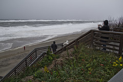 Recording the Waves (brucetopher) Tags: storm hurricane surf dangerous windy wind gale tropicalstorm blow gusts winddriven beach waves power force forceful wash breakers loud steps stairs landing walkway path boardwalk ocean sea rough hazardous cloudy woman man girl boy coat saltspray rose hips rosehips flora