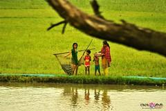 Bangladesh, Through my Lens ♥ (emonjaman) Tags: people peopleatwork nature bangladesh water green beautiful bd