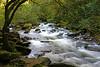 River Lyn (Treflyn) Tags: riverside walk lynmouth watersmeet devon river lyn national trust