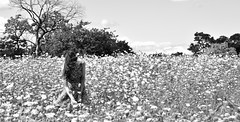 Untitled (Frank Carre) Tags: girl chica mujer woman flores flowers country campo blancoynegro blackandwhite black white blanco negro frank carre frankcarre outside blackwhiteaward fille femme fleurs noir blanc noiretblanc