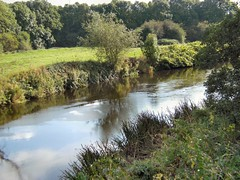 Calm water (Mrs Fogey) Tags: riverderwent derbyshire trees river
