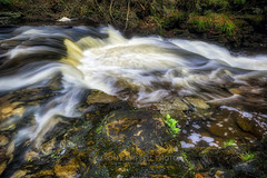 Flowmotion, 2017.04.22 (Aaron Glenn Campbell) Tags: rgsp rickettsglen statepark dcnr fairmounttownship luzernecounty pennsylvania glenleigh fallstrail kitchencreek outdoors nature cascades water motion blur optoutside spring 2017 3xp ±2ev hdr macphun aurorahdr2017 nikcollection colorefexpro viveza sony a6000 ilce6000 mirrorless sigma 19mmf28exdn primelens wideangle emount neewer ndfilter variable neutraldensity