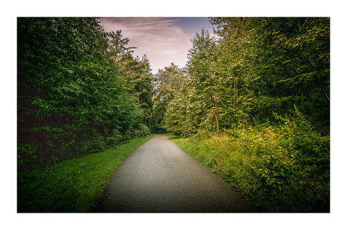 """The Morning Walk • <a style=""""font-size:0.8em;"""" href=""""http://www.flickr.com/photos/110479925@N06/35790747864/"""" target=""""_blank"""">View on Flickr</a>"""