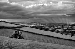 Hay making on the downs