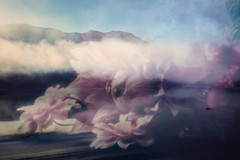 magical world (kunstvibe) Tags: mist fog mountain sylvenstein berge bayern lensbaby pinhole doubleexposure multipleexposure alpen
