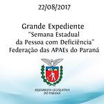 Grande Expediente - Semana Estadual da Pessoa com Deficiência - Sra. Neuza Soares de Sá - Presidente da Federação das APAEs do Paraná