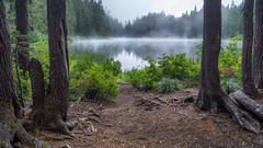 Dance of the Wisp (writing with light 2422 (Not Pro)) Tags: danceofthewisp goatlake morning alone giffordpinchotforest washingtonstate richborder sonya77 landscape fog mist lake nationalforest