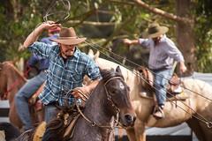 Cowboy (Ars Clicandi) Tags: brazil brasil parana jaboti prova do laço comprido peao peão boiadero boiadeiro cowboy paraná br