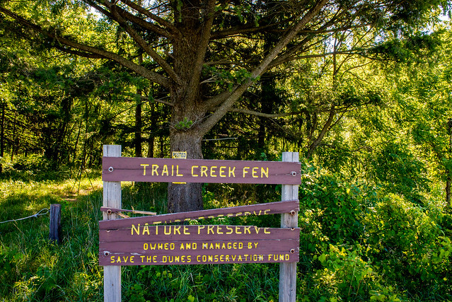 Trail Creek Fen Nature Preserve - July 25, 2017