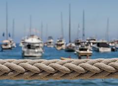 To raise the sails (Hanna Tor) Tags: nature landscape hannator sea ocean sky water beach shore sail ship bokeh blue outdoor