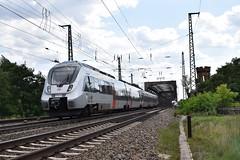 Hamster mit RB42 (michaelketzenberg) Tags: hamster hamsterbacke ¨db deutschebahn křeček vlak rb rb42 regionalbahn magdeburg