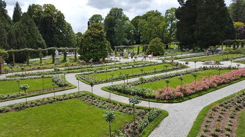 Italian Rose Garden in Mainau, Germany