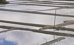 Salzland / Terre de Sel # 3 (schreibtnix on 'n off) Tags: reisen travelling europa europe frankreich france bretagne brittany breizh guérande terredesel saline saltworks salz salt olympuse5 schreibtnix
