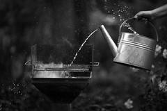 different ways (O.I.S.) Tags: gieskanne kanne can water wasser grill bbq bw sw sommer summer canon 5d mkii 135 f2 watering black schwarz tropfen drops